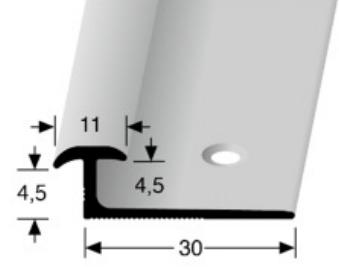 Doppeleinschubprofil (345) versenkt gebohrt