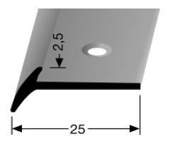 Schwellenprofil (341) versenkt gebohrt
